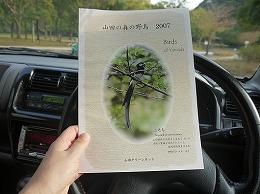 127  山田緑地.jpg